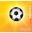 Soccer ball web icon flat design vector image