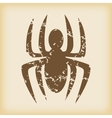 Grungy spider icon vector image