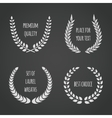 Set of laurel wreaths on chalkboard vector image