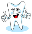 Two thumbs up cartoon tooth vector image