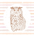 owl sketch vector image
