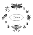 Hand drawn insect set in zentangle style Black vector image