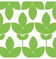 leafs plant ecology pattern vector image
