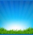 blue sky and grass sunburst background vector image