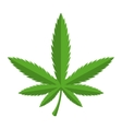 green cannabis icon vector image