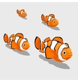 Clown fish small and close up isolated vector image