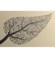 Tree silhouettes Leaf shape vector image