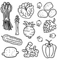 various vegetable of doodles hand draw vector image