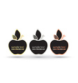 empty frame apples with place for text on a black vector image