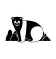 wild bear panda with bush vector image