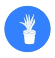 Office plant in th flowerpot icon in black style vector image