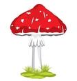 Mushroom fly agaric vector image