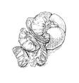 Mandarin hand drawing vector image