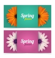 Flowers and frame for text vector