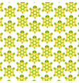 cute turtle pattern background vector image