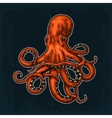Octopus Sea Monster vector image