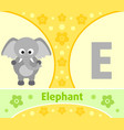 the english alphabet with elephant vector image