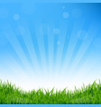 blue sunburst and grass background vector image
