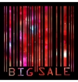Big Sale bar codes all data is fictional EPS 8 vector image vector image