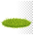 oval carpet of grass vector image
