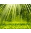 Green Background With Beams vector image