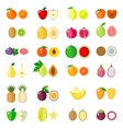 Set of flat fruits vector image