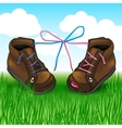 two shoes with laces on the green grass vector image