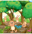 Four rabbits playing at the forest vector image