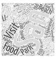 Things To Experience In San Diego Word Cloud vector image