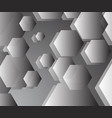 basic grey pentagon background in harmony vector image