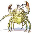 Sea Crab vector image