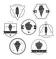 Collection of ice cream labels vector image