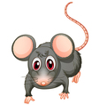 A young mouse vector image