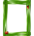Grass frame with ladybugs vector image