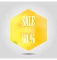 summer sale icon in hexagonal shape vector image