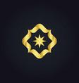 Circle star gold logo vector image