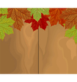 Autumn leave over wood vector image