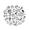 Vegetable sketch frame for your design vector image