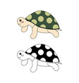 cute turtle vector image