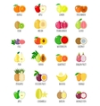 Set of flat fruits vector image