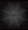 black spider and web cobweb vector image