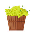 wooden basket with grapes white wine vector image