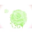 Green watercolor rose vector image