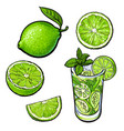 whole half quarter lime and glass of lemonade vector image