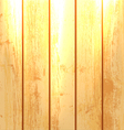 Wood Planks Background vector image