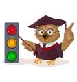 Owl teacher and traffic light vector image