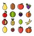 Fresh fruit icons set flat design line art vector image vector image