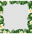 border palm trees and plumeria vector image