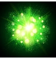 Green shining fireworks explosion at black vector image vector image