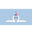 Loving couple of swans vector image